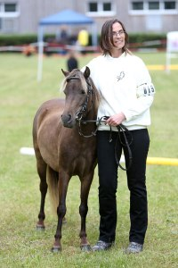 Classic Pony Schirmer Lima