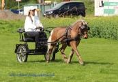 Classic Pony Schirmer Janosch 4 17.04.2017