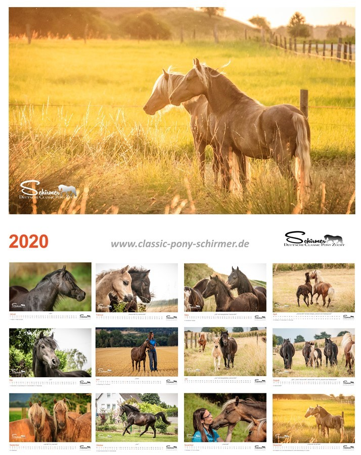 Classic Pony Schirmer Kalender 2020